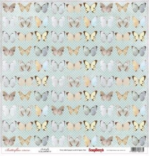 Butterflies collection ''BUTTERFLY''